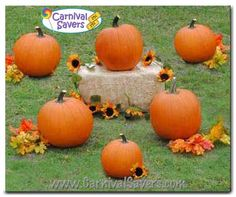 This Pumpkin Ring Toss from Carnival Savers is another fun game idea!This Pumpkin Ring Toss from Carnival Savers is another fun game idea! The Idea is to toss the rings on the stems. Harvest Festival Games, Fall Festival Party, Harvest Games, Fall Festivals, Halloween Carnival Games, Halloween Games For Kids, Carnival Ideas, Halloween Party, Carnival Birthday