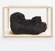 Herman de Vries | In process : burned | 2007 | Burned oak in vitrine | 50 × 78 × 47 cm