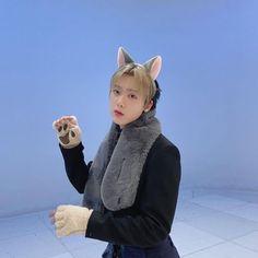 Astro Sanha, Astro Fandom Name, Cat Cafe, K Pop Star, Blue Flames, Bright Stars, South Korean Boy Band, Boy Bands, Boy Groups