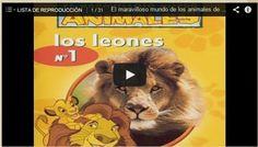 ES RACÓ DES PT - EL RINCÓN DEL PT: Una col·lecció de documentals sobre animals per primària que m'ha encantat !!