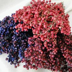 Dyed Pepperberries Dried Flowers for sale at Woodcreek Drieds