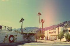 Ace Hotel Palm Springs. The Washington Lobbyist.