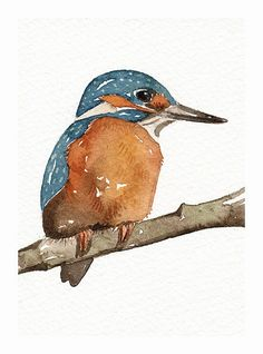 Aceo Miniature Watercolor Original Painting Art Bird by lorisworld,