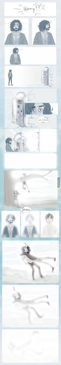 Sirius Black beyond the Veil
