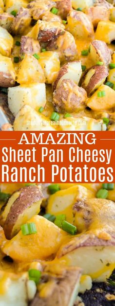 If you need an easy side dish recipe that everyone will love look no further. You will love these Sheet Pan Cheesy Ranch Potatoes. Baked red potatoes tossed with ranch seasoning and covered in cheese. dinner no cheese Sheet Pan Cheesy Ranch Potatoes Dinner Side Dishes, Side Dishes For Bbq, Potato Side Dishes, Side Dish Recipes, Side Dishes With Burgers, Easy Vegetable Side Dishes, Easy Recipes, Healthy Recipes, Baked Red Potatoes
