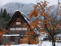 Shirakawa-go kaki | New on 500px : Shirakawa-go in snow by MIYAMOTO_Y | Chae H. Bae ...