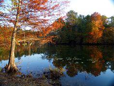 Fall color along Lake Maumelle, west of Little Rock, Arkansas
