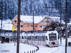 The white Kamblytrain BLS in the white snow😊. (train with advertising for cookies) #sebafor