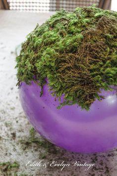 Make Your Own Moss Balls