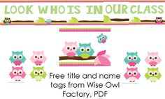 Free Welcome Back Owl Class Theme Display