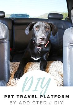 Build this DIY pet platform to make traveling with your pets comfortable for everyone! Carpet Remnants, Dog Car, Pet Travel, Animal Projects, Diy Carpet, Back Seat, Diy Stuffed Animals, Large Dogs, Easy Diy Projects