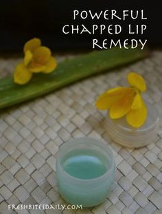 An Aloe-Based Chapped Lip Remedy (in a Lesson from India)