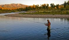 10 Great Western Colorado Fly-Fishing Spots - A fly-fisher casts his line at sunset on the Yampa River near Steamboat Springs, Colorado Fly Fishing Colorado, Steamboat Springs Colorado, Destin Fishing, Colorado Rockies, Trout Fishing Tips, Fishing Guide, Kayak Fishing, Fishing Stuff, Going Fishing
