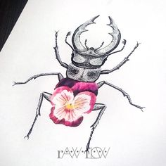 Stag beetle tattoo stag tattoo dotwork pansy