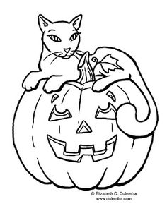 Cat with pumpkin @Elizabeth Lockhart Lockhart Dulemba's website
