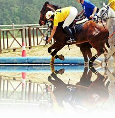 Galician Horseball