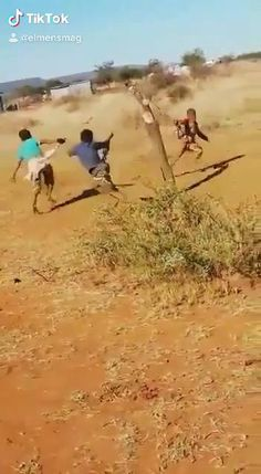 Funny Vid, Funny Clips, Stupid Funny Memes, Funny Relatable Memes, Funny Cute, Really Funny, Top Funny, Funny Pranks, Funny Humor