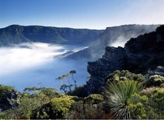 Australia has a lot to offer to visitors. Blue Mountains Day Tour is one of the most popular tours in Australia.