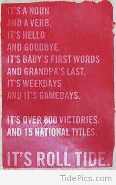 If you are an Alabama fan you know how so true this is.we take our football… Sec Football, Crimson Tide Football, Alabama Football, Alabama Crimson Tide, Football Rules, Alabama Baby, Oklahoma Sooners, Texas Longhorns, Football Season