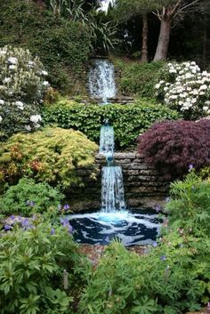 Bakyard-Waterfall-with-lush-garden.jpg Garden, ideas. pation, backyard, diy, vegetable, flower, herb, container, pallet, cottage, secret, outdoor, cool, for beginners, indoor, balcony, creative, country, countyard, veggie, cheap, design, lanscape, decking, home, decoration, beautifull, terrace, plants, house.