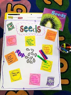 We had so much fun learning all about plants! I just love this spring time unit. Here are some of the things we did in our plant unit. Easel Pad, Time Unit, All About Plants, Fun Learning, Welcome, Spring Time, Seeds, Teaching, Room