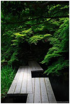 Wooden bridge in a dark corner of Tenju-an temple gardens, Kyoto, Japan | Flickr - Photo Sharing!