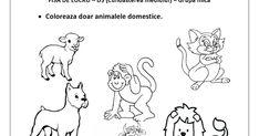 Un blog ce cuprinde planse de colorat si fise de lucru pentru copii. Acest blog vine ca un ajutor in intampinarea cadrelor didactice. Kindergarten, Preschool, Childhood, Snoopy, Kids, David, Fictional Characters, Blog, Young Children