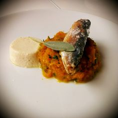 Mini makrele Manná na puree z dyni z chrzanową panna cottą.    Mini mackerel in the pumpkin puree with horseradish panna cotta.