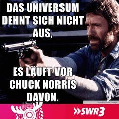 Chuck Norris Universum läuft weg. Lustig witzig Sprüche Bild Bilder Steven Seagal, Dory, Haha, Jokes, Funny, Chucky, Trends, Smile, Humor