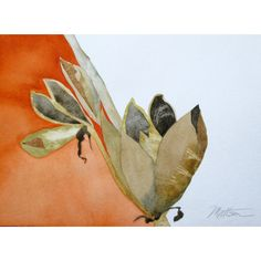 "Southwest Series Yucca Seed Pods at Sunset"" Original One of a Kind... ($270) ❤ liked on Polyvore featuring home, home decor and wall art"