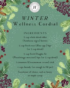 Learn about three different types of conifer trees and their wellness benefits, as well as how to use them in three conifer cordial recipes! Healing Herbs, Medicinal Plants, Natural Healing, Natural Health Remedies, Herbal Remedies, Natural Medicine, Herbal Medicine, Herbal Kitchen, Cordial Recipe