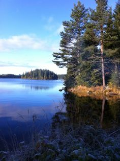 "Älgsjön Värmland Sweden, ""moose lake"" so pretty"