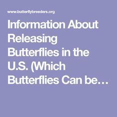 Information About Releasing Butterflies in the U.S. (Which Butterflies Can be…