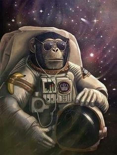 monkey with sunglasses space - Google Search