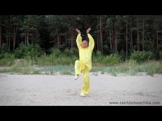 Five Animals, Qigong by Master Wang Zhi Ping (1 movement) - YouTube