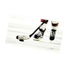 #hockey#hockeylife#hockeyfan#hockeygirl#lovehockey#lovehockeyplayer#elh#nhl#nhlhockey#nhlbruins#nhliving#khl#hockeyteam#teams#boston#floridapanthers#carolina#kometabrno#ice#newyorkrangers#philadelphiaflyers#tampabay#pinguins#nitra#love