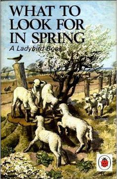 What to Look for in Spring -- Cover -- High quality art prints, framed prints, canvases -- Ladybird Prints Vintage Book Covers, Vintage Children's Books, Books To Read, My Books, Ladybird Books, Thing 1, Nature Study, History Books, Book Authors