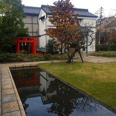 Неотразимый Киото #япония  #киото  #мидокоро #отражение #отражения #японскийсад  #японскиесады #осень