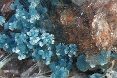 Aurichalcite, Zimapan, Hidalgo, Mexico. Acicular blue crystals. Fov 8 mm. Collection: Lithothek der Münchener Micromounter. Copyright: derhesse