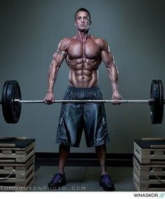 15 best muscle up images  muscle bodybuilding fitness