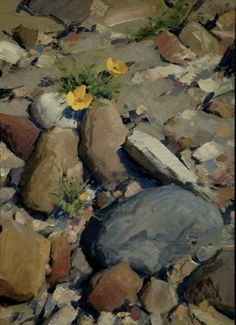 Dry Creek Poppies (SOLD) by Matt Smith Oil ~ 10 x 14