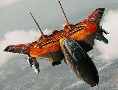 F14  #Fighter