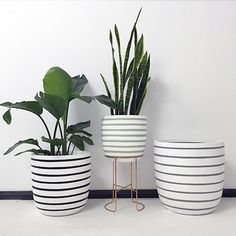 The latest collection of Design Twins Lightweight Pots has arrived! We've been busy in our workshop to bring you this latest series of our signature Design Twins lightweight pots. In creating these...