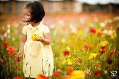 Flower Fields - Picture of Carlsbad Flower Fields, Carlsbad ...