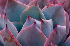 OMG - I love these colours by Katha Traenkle on 500px