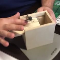 spider prank gift,Funny, Funny Categories Fuunyy Just set it out and let curiosity take over. BEST GIFT FOR HALLOWEEN make pranks for your friends and family get yours with Good Pranks, Funny Pranks, Funny Jokes, Hilarious, Easy Pranks, Kids Pranks, Locker Pranks, Best Pranks Ever, School Pranks
