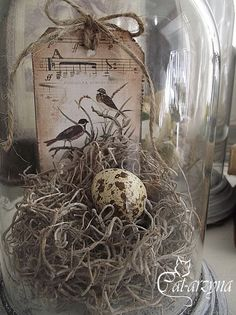 20 Cute Bird Nest Decorations For Easter Decor Birdies and their nests are symbolic of Easter, so we'll look for the eggs. That's why bird nest decorations are so popular and traditi . Oster Dekor, Cloche Decor, The Bell Jar, Bell Jars, Bird Cages, Bird Nests, Deco Floral, Vintage Easter, Glass Domes