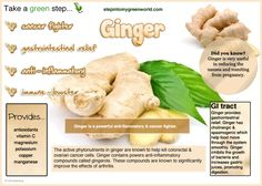 ☛ Ginger has many health benefits.  Make sure you have some daily.   http://www.facebook.com/StepIn2MyGreenWorld        ✒ Share | Like | Re-pin | Comment