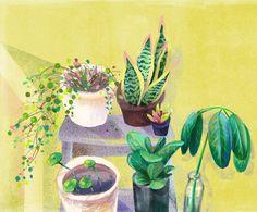 My Plants Corner on Behance