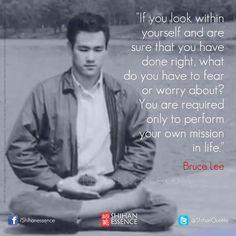 """""""Se você olhar para dentro de si mesmo e tenho a certeza que você faz isso, o que você tem a temer ou se preocupar? Você apenas está obrigado a realizar a sua própria missão na vida"""". - Bruce Lee"""